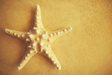 yellow starfish with copy space on sand background  photo