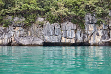 rock in the tropical sea. nature