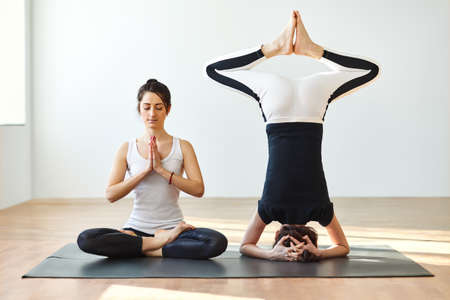Two young women practicing yoga poses and asanas. Partner yoga Stock Photo