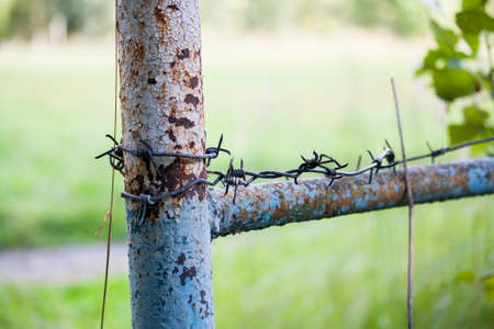 Barbed wire on rusty fence