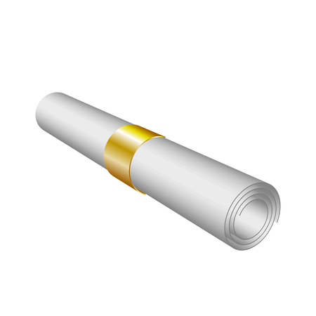 Vector of roll paper like diploma with gold ribbon, isolated on white, 3d Rolled Paper