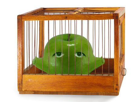waiting convict: Apple, prisoner in the cage made of wood with iron rods, isolated Stock Photo