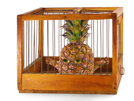 waiting convict: pineapple, prisoner in the cage made of wood with iron rods, isolated Stock Photo