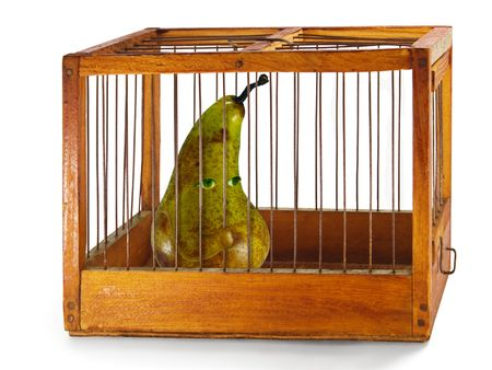 waiting convict: pear, prisoner in the cage made of wood with iron rods, isolated