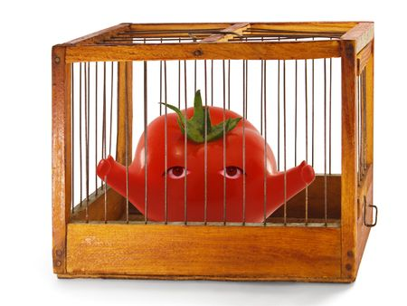 tomato, prisoner in the cage made of wood with iron rods, isolated Stock Photo - 7242736