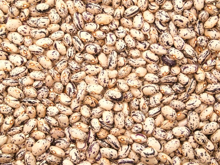 mottled: Mottled beans background.