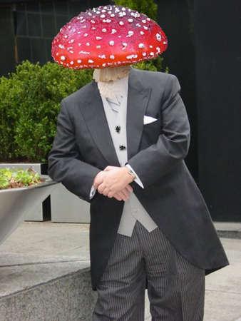 mushroomed Reklamní fotografie