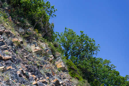 sheer rock with trees on top against a clear blue sky