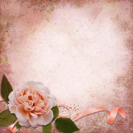 rose photo: Rose on a vintage background Stock Photo