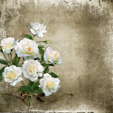 old frames: Vintage shabby background with white roses