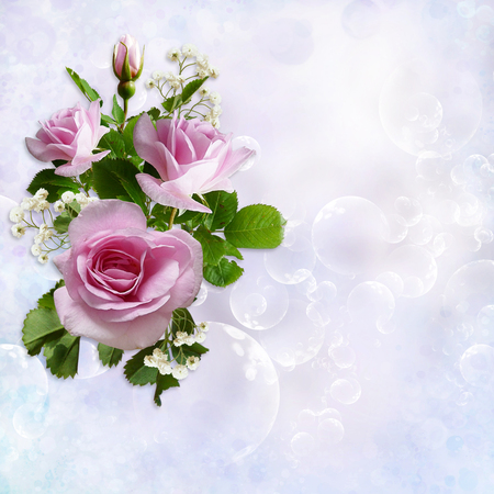 rose photo: Gorgeous gentle background with flowers roses