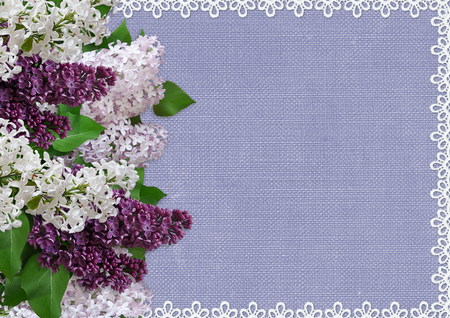 the spouse: Vintage background with lace and branches of lilac