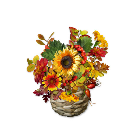 Bouquet of flowers, berries and leaves in a wicker vase on white insulation background Stock Photo