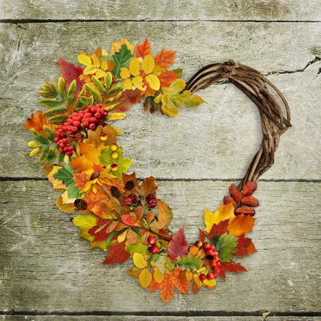 scabrous: A wreath of autumn leaves and berries in heart shape on wooden background