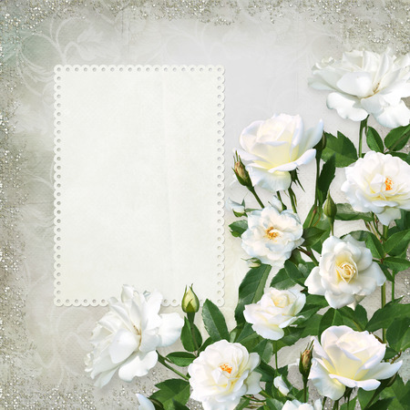 White roses with card for text or photo on a beautiful vintage background
