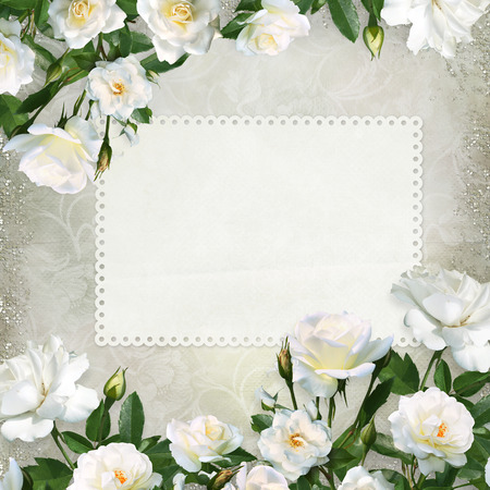 Border of white roses, card for text or photo on a beautiful vintage background Imagens