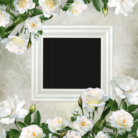 Frame and borders of white roses on a beautiful vintage background Imagens