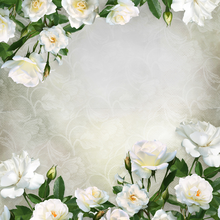 Border of white roses on a beautiful vintage background with space for text or photo