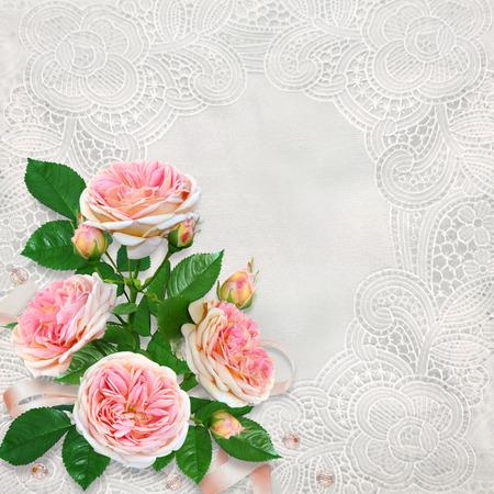 Congratulatory background with beautiful vintage lace and a bouquet of pink roses Imagens