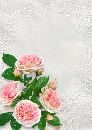 Greeting card with space for text or photo, pink roses on vintage lace background Imagens