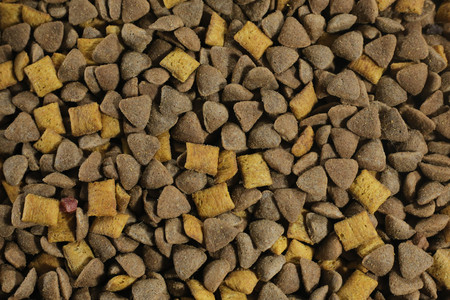 Pile of dry cat food texture. Top view. Background of the granules