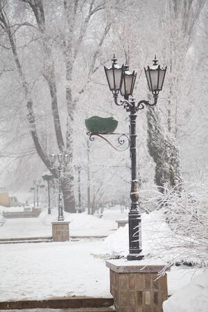street lamps: Snow-covered street lamps and trees on a winter city boulevard Stock Photo