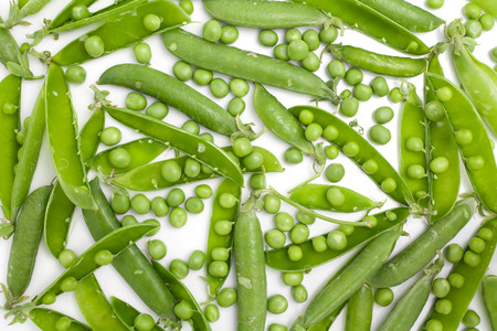 spreaded: Peas uniformly laid out on a white background. Pods of green peas and pea spreaded as a texture.
