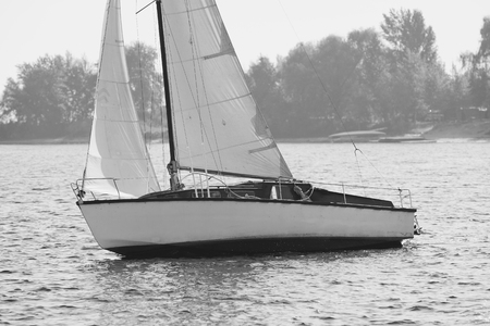 river bank: Monochrome picture of white sailing yacht catching the wind by river bank in autumn sunny day