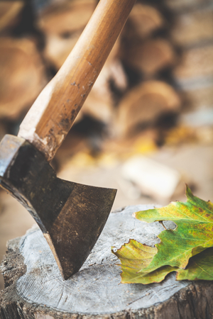 Hatchet sticking in a stump on green leaves Stock Photo