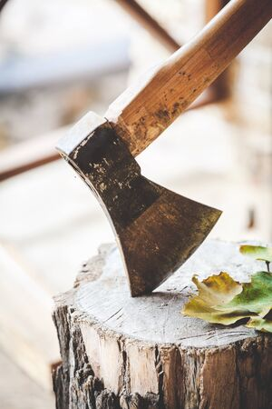 Hatchet sticking in a stump on which lie the fallen leaves