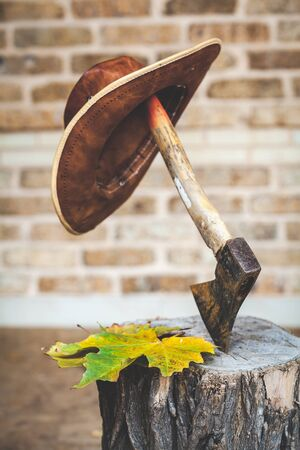 brown leather hat: brown leather hat hanging on handle of ax, which juts out into stump in background of a brick wall