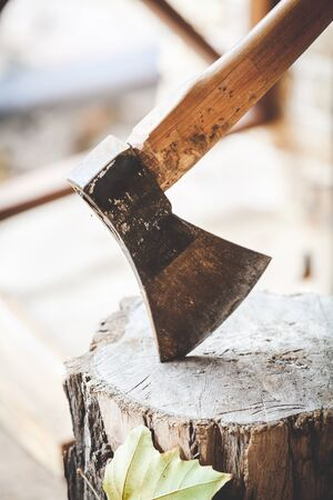 Hatchet sticking in a stump and maple leaf close-up Stock Photo