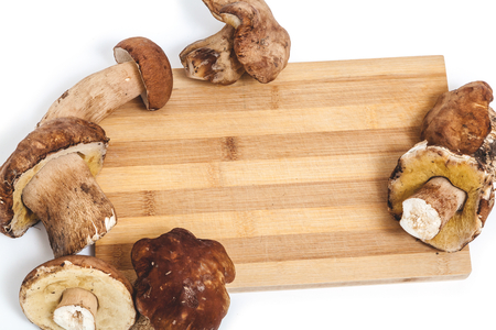 foot fungus: Fresh mushrooms mushrooms are located on the edges of the kitchen cutting board
