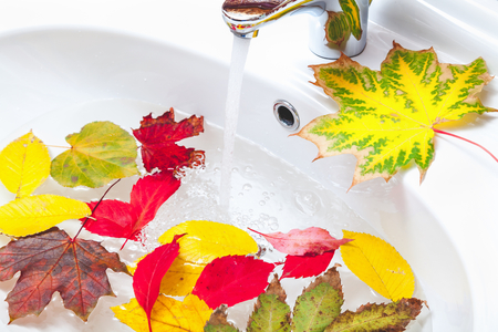 Beautiful fallen leaves of different trees floating in the sink fashionable ceramic washstand. From metal faucet flowing water