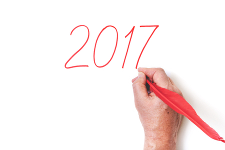 top seven: 2017 red rooster. Hand painted red digits of the year of the cock feather