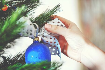 Decorate the Christmas tree. Womans hand hangs a beautiful toy blue ball with a bow on green coniferous branch close-up