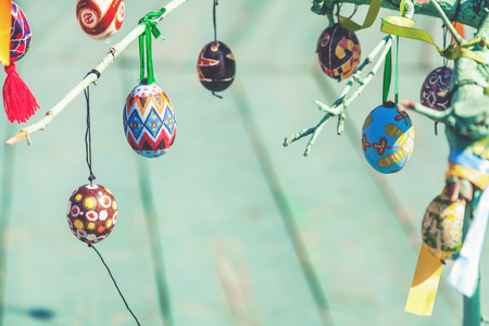 Several Easter colored eggs hanging on a tree branch color sunny spring day