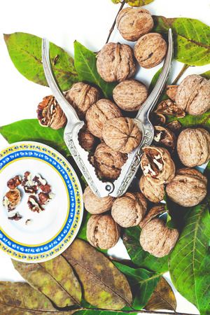 nuclei: Group of ripe walnuts lying on green leaves on a white background. Nearby lie the steel tongs for chopping nuts and saucer with purified nuclei  Stock Photo