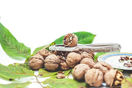 nuclei: Group of ripe walnuts lying on green leaves on a white background. Nearby lie the steel tongs for chopping nuts and saucer with purified nuclei
