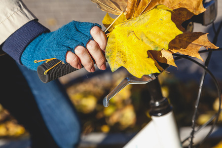 hand brake: Female hand in knitted mittens with a bouquet of yellow maple leaves holding modern bicycle wheel Stock Photo