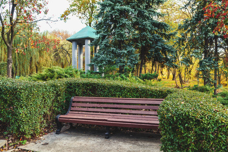 picturesque wooden bench with a high back in a niche of a bush in an autumn park. In the background, the roof of the arbor
