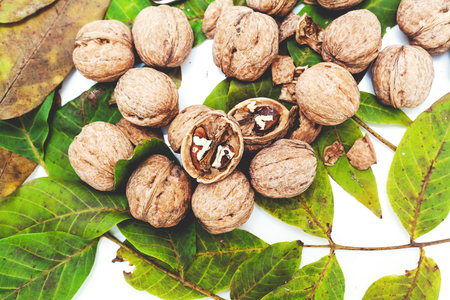 Group of ripe walnuts lie on top of the leaves on a white background. Several chopped nuts with shells