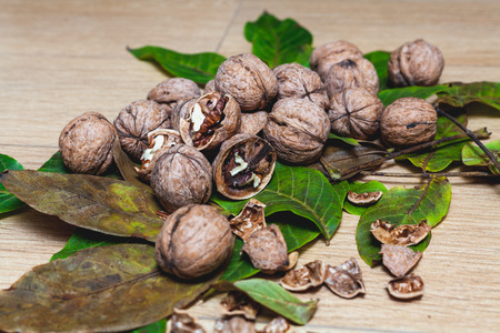 Heap of ripe walnuts and green leaves of the tree lie on a brown background. Several of them split shells  Stock Photo