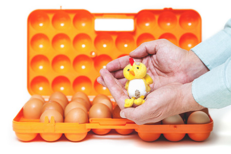 Yellow toy chicken sitting in the palm of an open plastic container for transporting eggs.