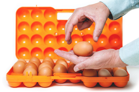 large chicken egg lay in the palm of an open container for transporting eggs.