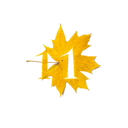Autumn figures. Digit 1 is carved from a beautiful yellow maple leaf on a white background. On the sheet, the letter pattern of the letter
