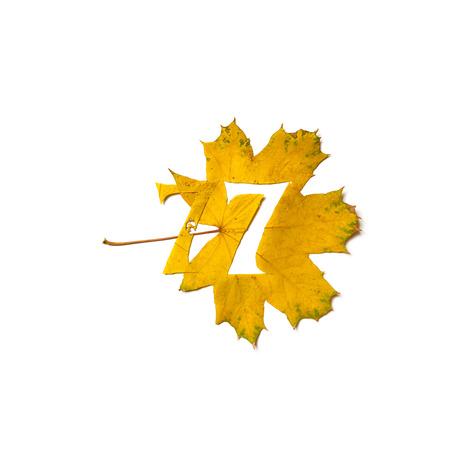 Autumn figures. Digit 7 is carved from a beautiful yellow maple leaf on a white background. On the sheet, the letter pattern of the letter