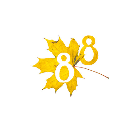 Autumn figures. Digit 8 is carved from a beautiful yellow maple leaf on a white background. On the sheet, the letter pattern of the letter Stock fotó