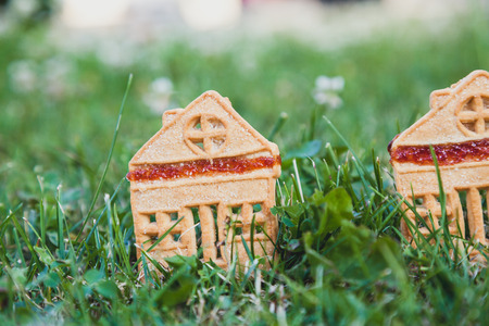 fabulous sweet house. Two cookies in the form of a small house stand on a green meadow Stock fotó