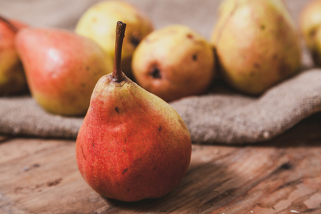 Still life with pears. a group of ripe pears lie on sackcloth on old planed wooden boards